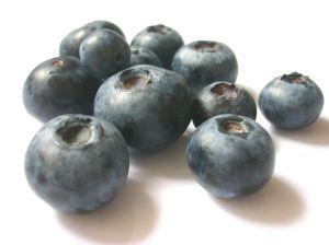 brain food blauwe bessen