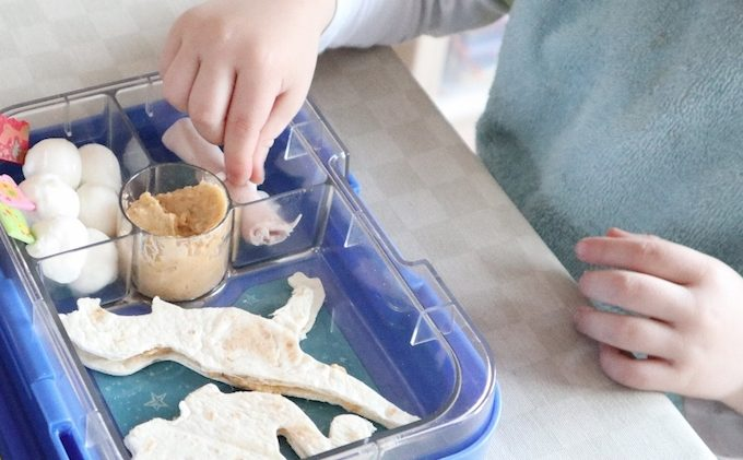 bento dino review tortilla wraps